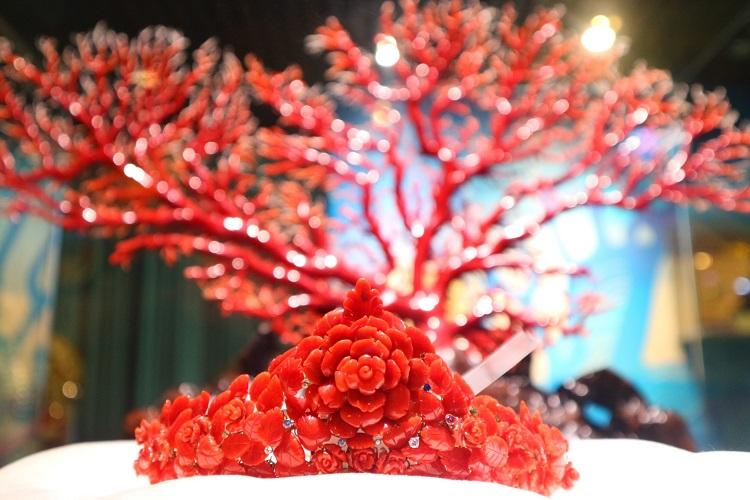 台湾で有名な赤石サンゴ