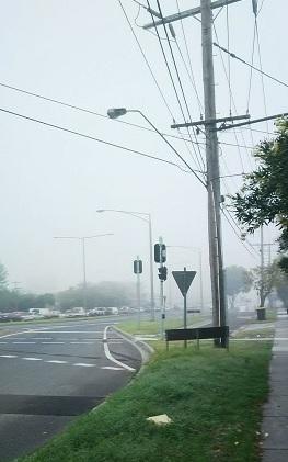 霧の濃い朝
