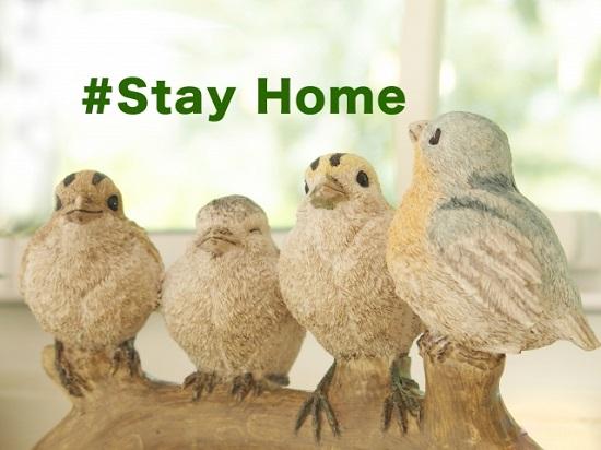 #Stay Home おうち生活を楽しむ方法を模索